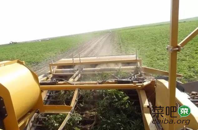 一起围观美国马铃薯农场的管理模式!值得借鉴学习