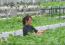 打造现代农业园区,农民变身产业工人!